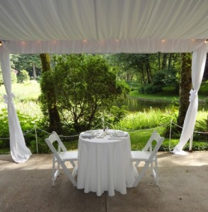 Canopy Liner and Pole Drapes from Voila Catering