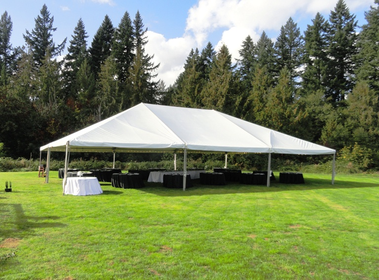 Wedding Reception Canopy